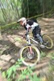 De fietsgezoem van de berg stock afbeeldingen