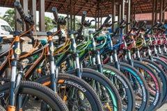 De fietshuur voor publiek in Titiwangsa-Meertuinen, het is een recreatief park met een groot meer als zijn hoofdaantrekkelijkheid royalty-vrije stock afbeelding