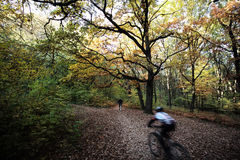 De fietsruiters in de herfst parkeren Royalty-vrije Stock Afbeeldingen