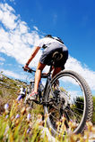 De fietssleep van de berg Stock Afbeelding