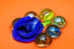 De fijne kunst van glas marmeren ballen en de purpere Erwt van de kleurenvlinder Royalty-vrije Stock Foto