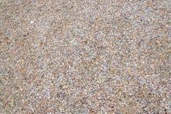 De fijne shells textuur eindigt royalty-vrije stock afbeeldingen