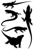 De silhouetten van hagedissen Royalty-vrije Stock Afbeelding