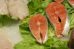 De filet van vissen Royalty-vrije Stock Fotografie
