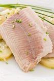 De filet van vissen stock foto