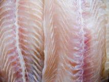 De filet van vissen   Royalty-vrije Stock Foto