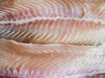 De filet van vissen Royalty-vrije Stock Afbeeldingen