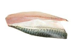 De filets van de makreel Stock Afbeelding
