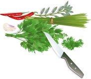 De fines herbes illustration de vecteur