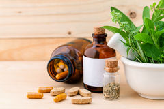 De fines herbes frais de soins de santé alternatifs Image stock