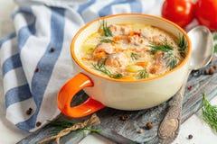 De finse soep van de vissenroom royalty-vrije stock foto