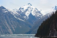 De fjord van het Tracywapen zoals die van een cruiseschip wordt gezien Stock Foto's