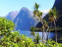 De fjorden van Nieuw Zeeland stock fotografie