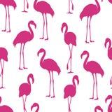 De flamingo isoleerde Exotisch vogelsilhouet Roze flamingo naadloos patroon vector illustratie
