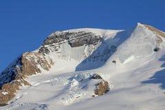De flank van Onderstel Athabasca stock foto
