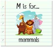 De Flashcardbrief M is voor zoogdieren stock illustratie