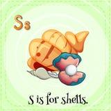 De Flashcardbrief S is voor shells Stock Fotografie