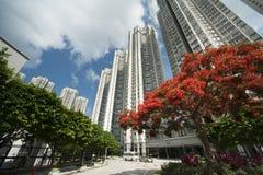 De flat van Hongkong royalty-vrije stock fotografie