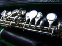 De flautim Imagens de Stock