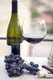 De fles, het glas en de druiven van de wijn Stock Afbeeldingen
