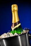 De fles van Champagne in ijs Stock Foto's