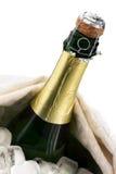 De fles van Champagne op ijs Stock Foto's