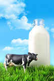 De fles van de melk in het gras Royalty-vrije Stock Foto's