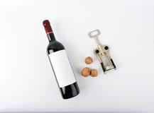 De fles van de modelwijn met drie noten Stock Foto's
