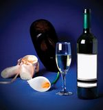 De fles van de wijn Royalty-vrije Stock Foto