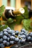 De fles van de wijn, druif bladeren op een houten vat Stock Afbeeldingen