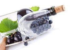 De fles van de wijn met glas en druiven Stock Afbeeldingen