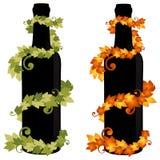 De Fles van de wijn met Wijnstok Royalty-vrije Stock Foto's
