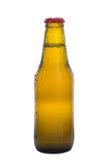 De fles van het bier Royalty-vrije Stock Foto's