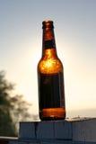 De Fles van het bier stock afbeeldingen