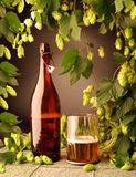 De fles van het bier en met hop Stock Afbeelding