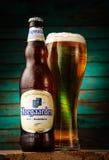 De fles van het Hoegaardenbier op houten achtergrond Royalty-vrije Stock Fotografie