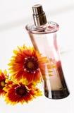 De fles van het parfum Stock Afbeelding