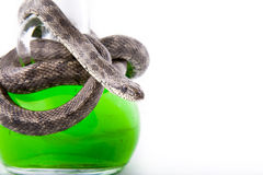 De fles van vergift verdraaide met slang-geconcentreerd Royalty-vrije Stock Foto's
