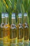 De flessen van Beer´s royalty-vrije stock afbeeldingen