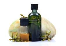 De flessen van de de eucalyptusolie van Ayurvedic Stock Afbeeldingen
