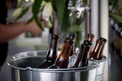 De flessen van het bier Royalty-vrije Stock Foto