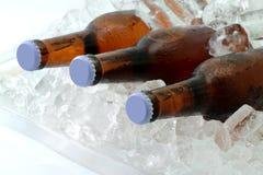 De flessen van het bier op ijs stock afbeelding