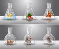 De flessen van het laboratorium stock illustratie