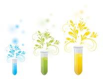 De flessen van het laboratorium met bloemenelementen Royalty-vrije Stock Foto's