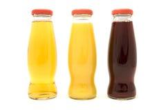 De Flessen van het sap Royalty-vrije Stock Afbeeldingen