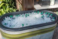 De flessen van het water in ijs Stock Fotografie