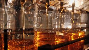 De flessen worden gevuld met zonnebloemolie op de transportband stock footage