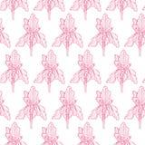 De fleur d'iris de modèle échecs roses doucement illustration de vecteur