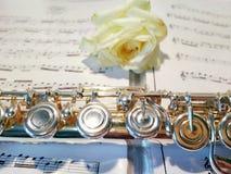 De fluit met nam op achtergrond van nota's toe stock foto's