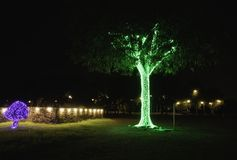 De- focus of The beautiful lights decorate the trees at night stock photography